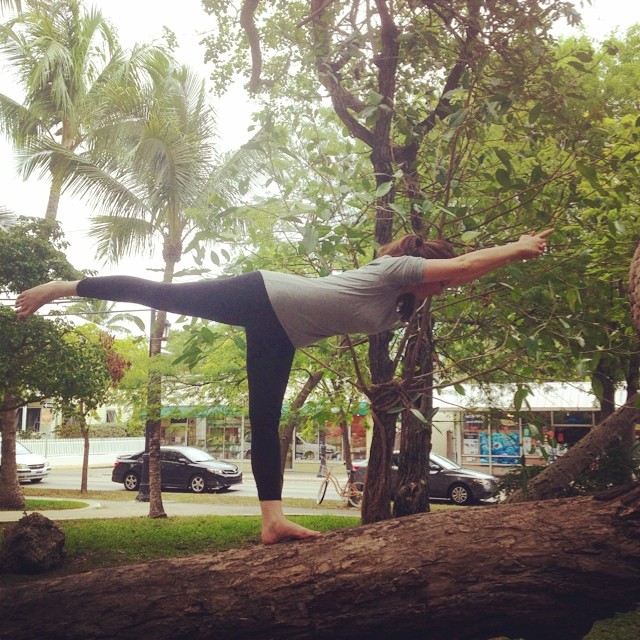 #yogainatree #yogaeverydamnday  #greenparrotbar #iloveyoga #instagood #balancingstickpose (damn my foot not pointing properly)