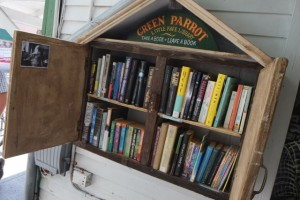 a view of a fully-stocked green parrot little free library