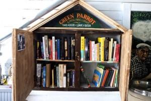 Green Parrot Little Free  Library Bookshelf